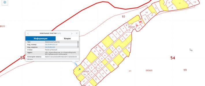 СНТ на публичной кадастровой карте